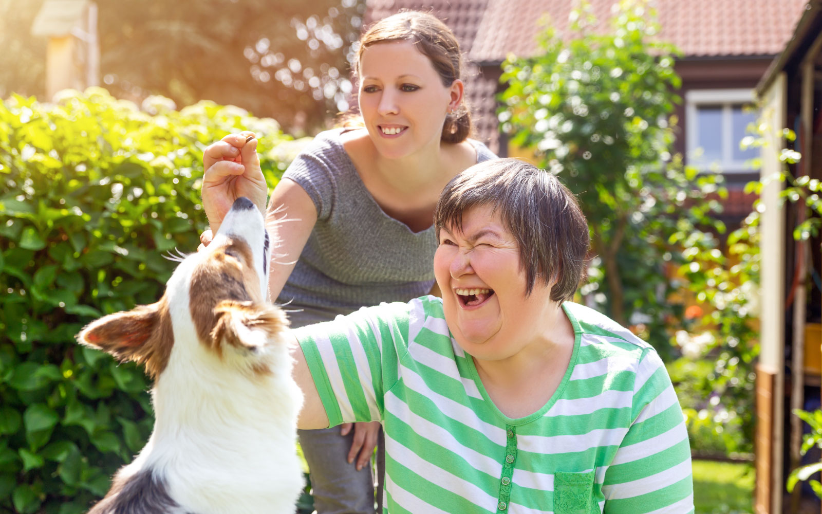 Just ONE Health and Social Care | Providing Care, Support & Accomodation | Dog and adults